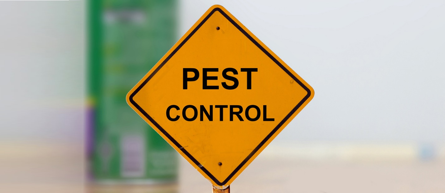 What Is The Most Dangerous Pest And How To Control It In OKC